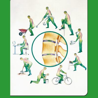 Rugklachten Klok Groen